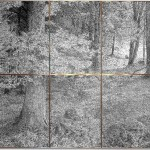 Ralph Kull, 3941 scenic wood, 1992